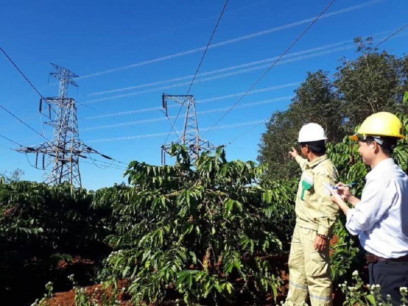 Bồi thường thu hồi đất trong hành lang an toàn lưới điện - ảnh 1