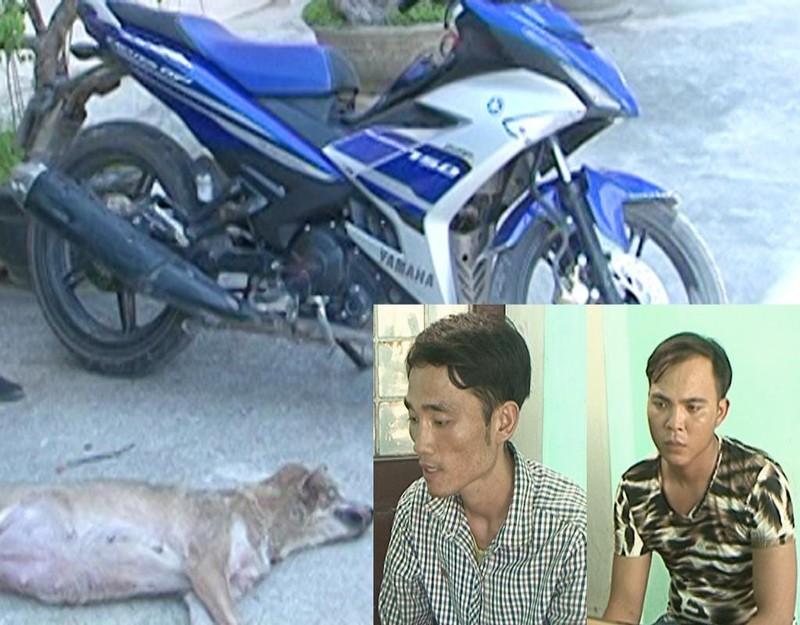 CSGT truy bắt hai kẻ trộm chó dùng dao bầu đâm chết chủ nhà - ảnh 1