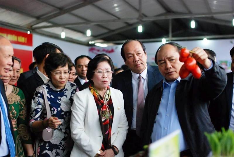 Thủ tướng trực tiếp giới thiệu nông sản ra thế giới  - ảnh 1