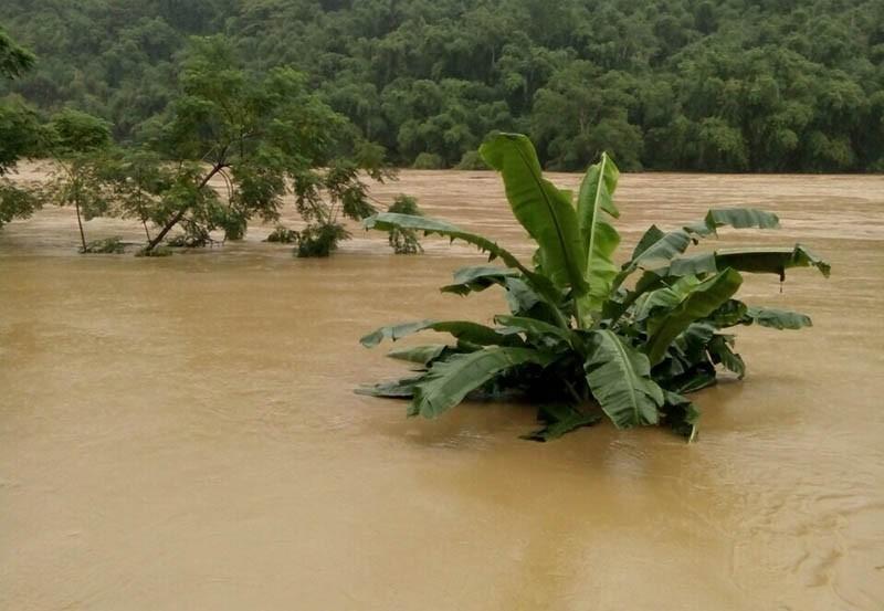 Nhiều nơi ở Thanh Hóa bị chia cắt, cô lập vì mưa lũ - ảnh 8