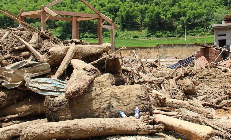 Lũ rút ở Sa Ná, gỗ tràn lan khắp bản - ảnh 7