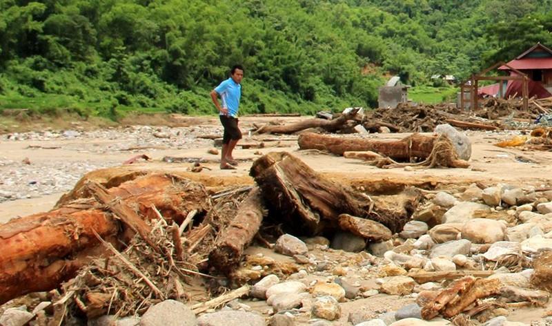 Lũ rút ở Sa Ná, gỗ tràn lan khắp bản - ảnh 3