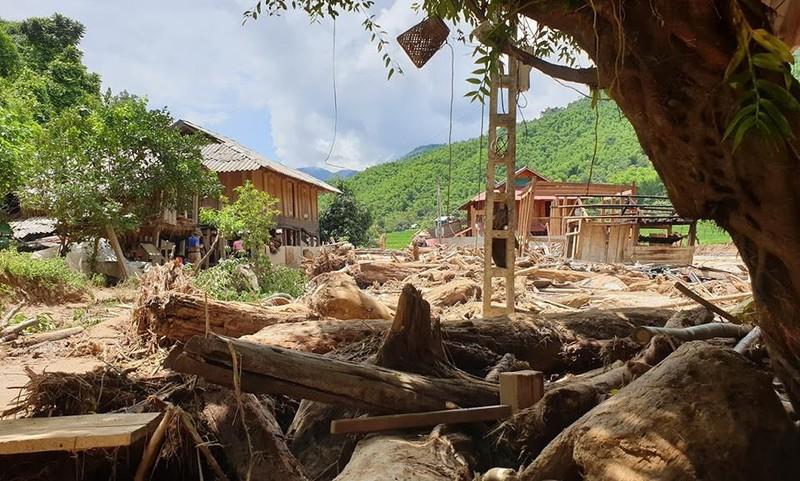 Lũ rút ở Sa Ná, gỗ tràn lan khắp bản - ảnh 5