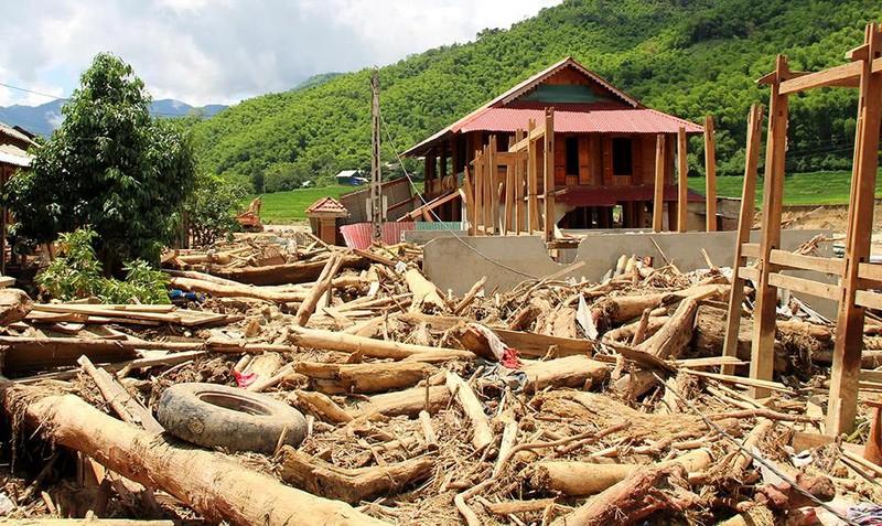 Lũ rút ở Sa Ná, gỗ tràn lan khắp bản - ảnh 10