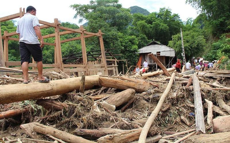 Lũ rút ở Sa Ná, gỗ tràn lan khắp bản - ảnh 12