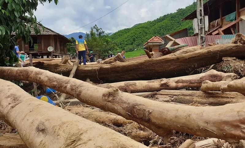 Lũ rút ở Sa Ná, gỗ tràn lan khắp bản - ảnh 8