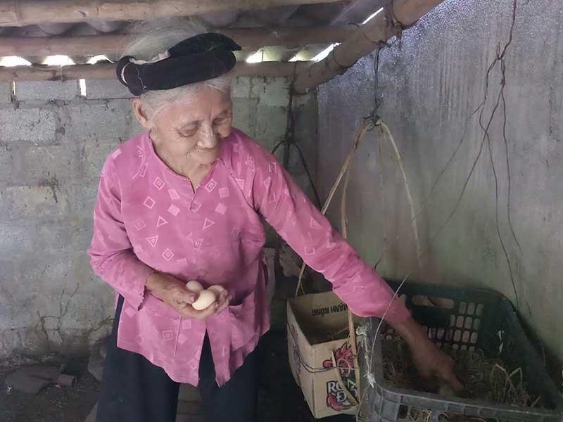 Chủ tịch tỉnh Thanh Hóa tặng bằng khen cụ bà xin thoát nghèo  - ảnh 2