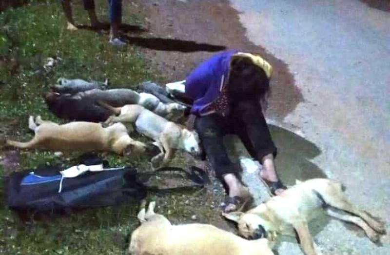 Dân vây bắt đôi nam nữ trộm nhiều chó, mèo trong đêm - ảnh 3