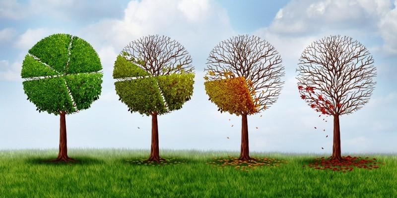 Tăng cường nhận thức về biến đổi khí hậu - ảnh 1