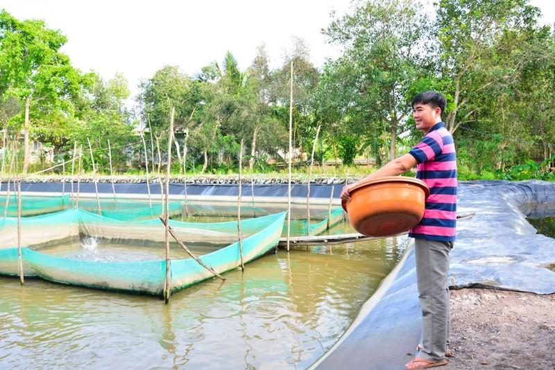Quỹ David Dương: Cần câu giúp nông dân thoát nghèo - ảnh 1