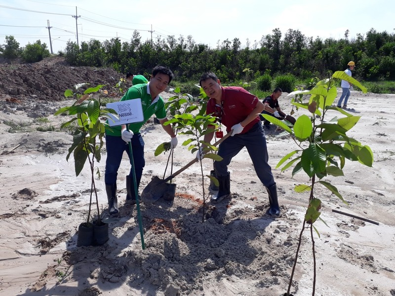 Nestlé Việt Nam hưởng ứng Tháng hành động vì môi trường - ảnh 1