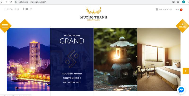 Mường Thanh Hospitality ra mắt website mới, diện mạo mới       - ảnh 2