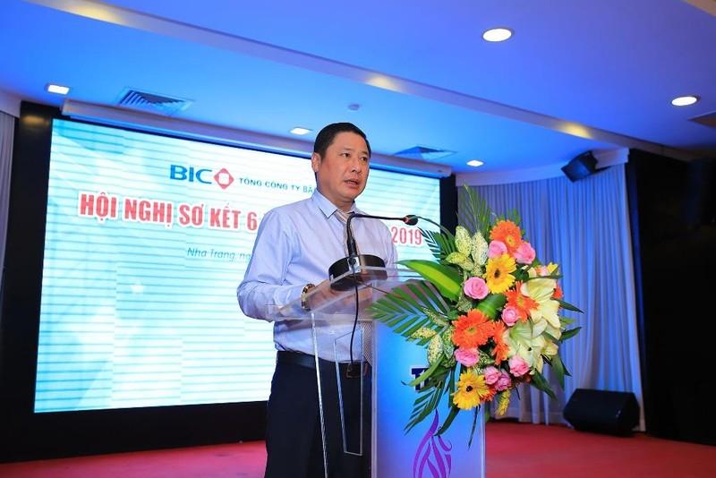 Lợi nhuận hợp nhất của BIC tăng 18% nửa đầu năm 2019 - ảnh 1