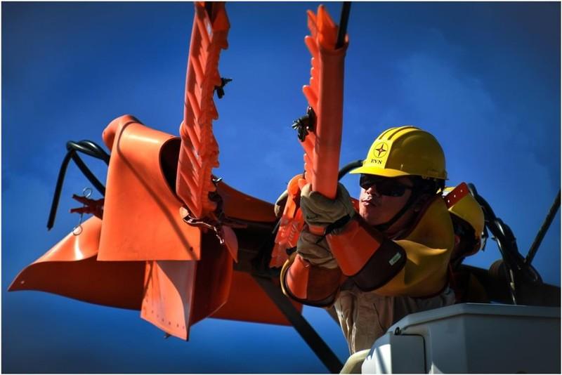 'Tự hào ngành Điện miền Nam - 45 năm xây dựng và phát triển' - ảnh 1