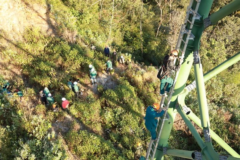 Đến Sa Pa xem người làm du lịch bảo vệ rừng già - ảnh 1