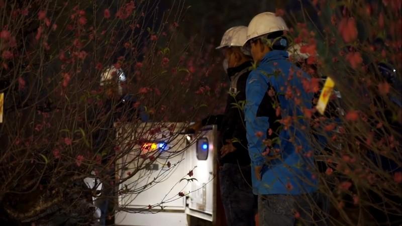 Đằng sau thành công của hội hoa xuân lớn tại Việt Nam 2020     - ảnh 4
