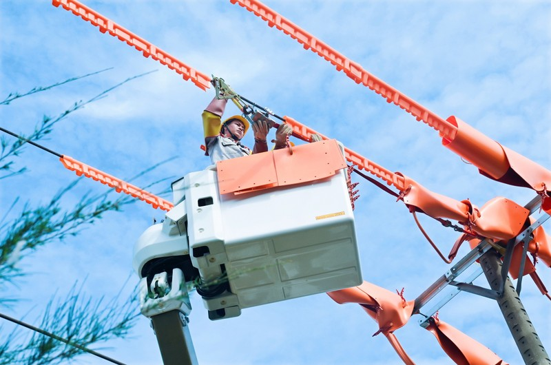 EVNSPC đảm bảo cấp điện ổn định, an toàn dịp lễ 2-9 - ảnh 1