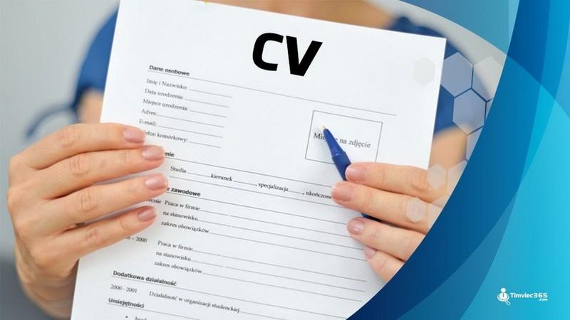 Timviec365.com - Thăng hoa trong tìm việc với CV đỉnh cao      - ảnh 1