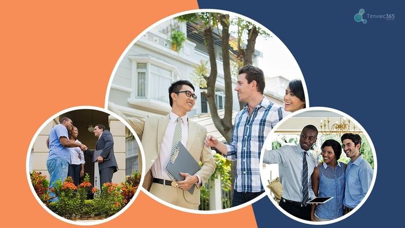 Timviec365.com.vn - tạo CV xin việc, tìm việc làm bất động sản - ảnh 2