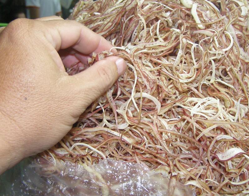300 kg bắp chuối bào có chất gây hại suýt ra thị trường - ảnh 1