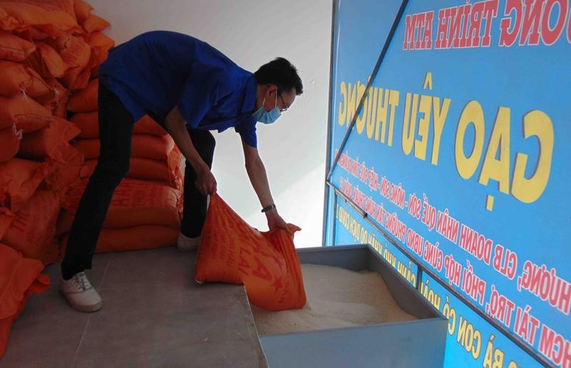 TP.HCM: Bà con quận 12 vui mừng vì có 'cây gạo' gần nhà - ảnh 5