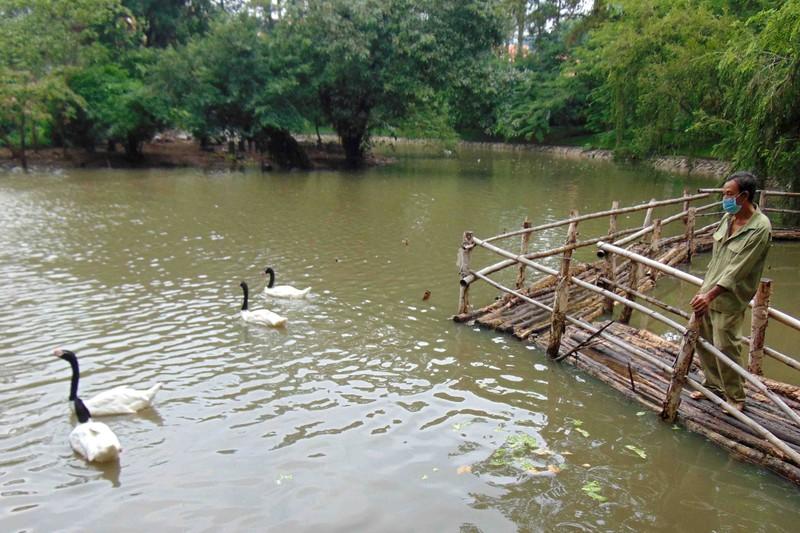 Thảo Cầm Viên SG: Bớt tiền lương mua thức ăn cho thú nuôi  - ảnh 1