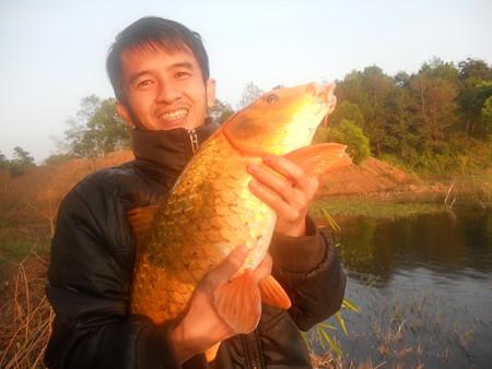 Cá chép vàng có cân nặng gần 10kg được câu ở Biển Hồ