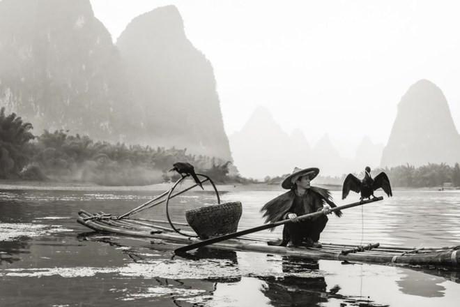Trần Đinh Thương đoạt giải đặc biệt cuộc thi ảnh quốc tế CGAP 2014 - ảnh 2