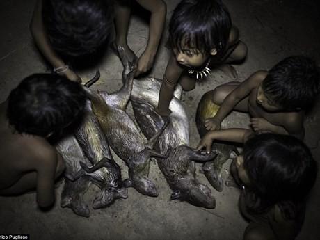 Bộ tộc kỳ lạ: Nhận động vật hoang dã làm con - ảnh 11