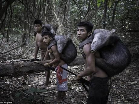 Bộ tộc kỳ lạ: Nhận động vật hoang dã làm con - ảnh 5