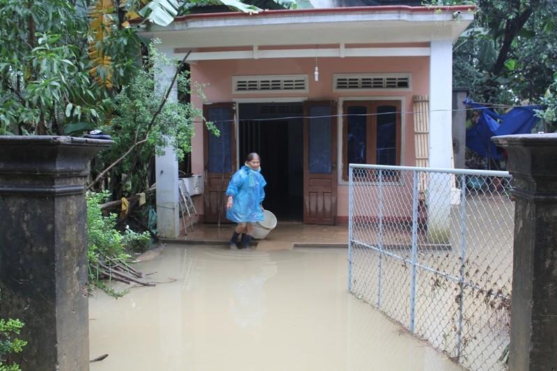 Dân nghèo vùng lũ Quảng Ngãi cần hỗ trợ gạo - ảnh 2