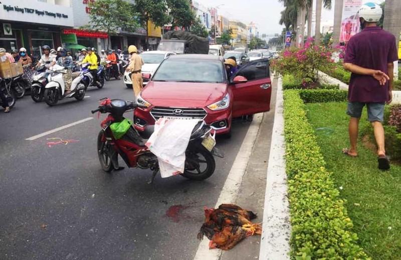 CSGT thông tin clip 'Ô tô không liên quan tai nạn bị tạm giữ' - ảnh 1