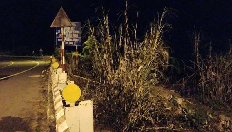 Dập tắt đám cháy thực bì trên bán đảo Sơn Trà, Đà Nẵng - ảnh 2