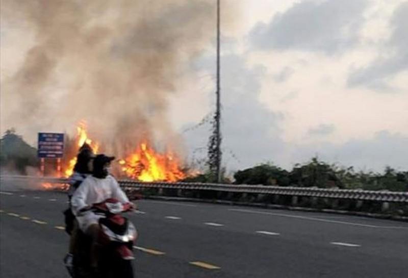 Dập tắt đám cháy thực bì trên bán đảo Sơn Trà, Đà Nẵng - ảnh 1