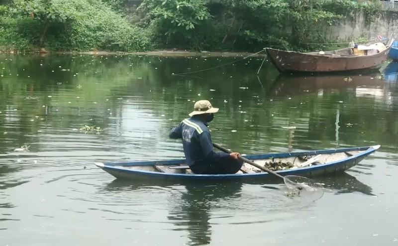 Cá chết nổi trắng cửa sông trôi ra biển ở Đà Nẵng - ảnh 2
