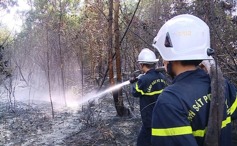 Cháy hơn 5 ha rừng trồng sát sân bay Đà Nẵng - ảnh 2