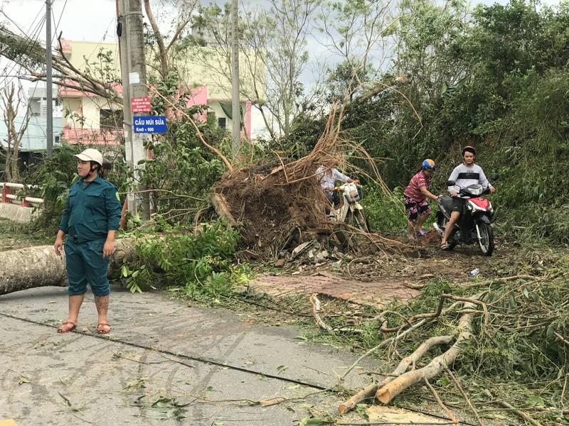 Quảng Ngãi tan hoang sau bão, hơn 38.000 nhà bị tốc mái - ảnh 2