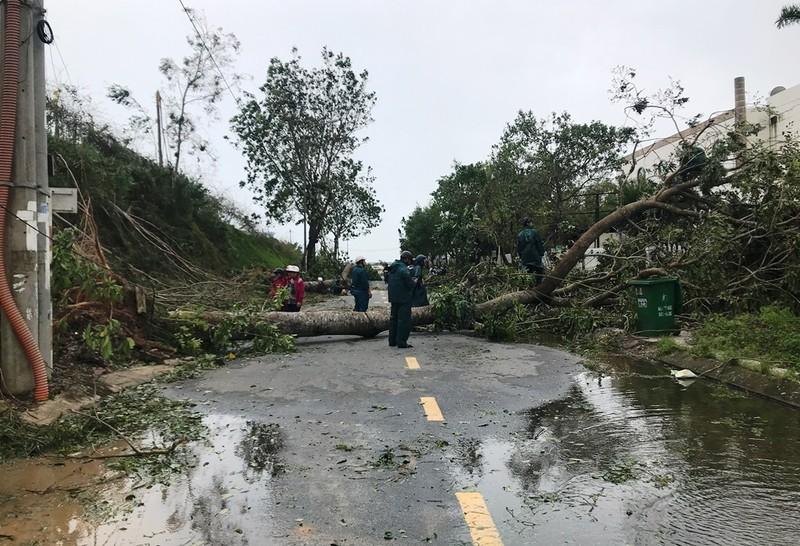 Quảng Ngãi tan hoang sau bão, hơn 38.000 nhà bị tốc mái - ảnh 1