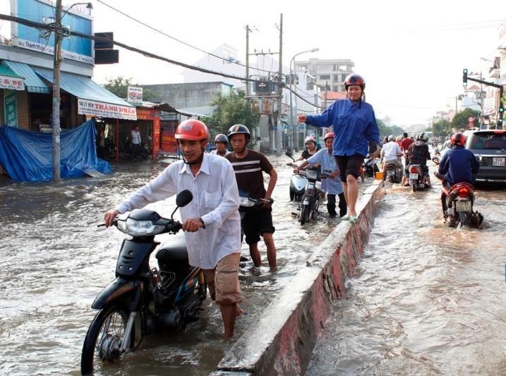 Cần Giờ xây dựng 25 tuyến kè bảo vệ các khu dân cư - ảnh 1