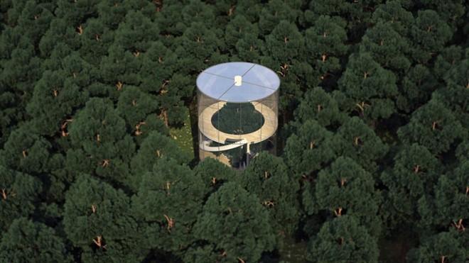 Nhà 4 tầng trong suốt nằm giữa rừng - ảnh 7