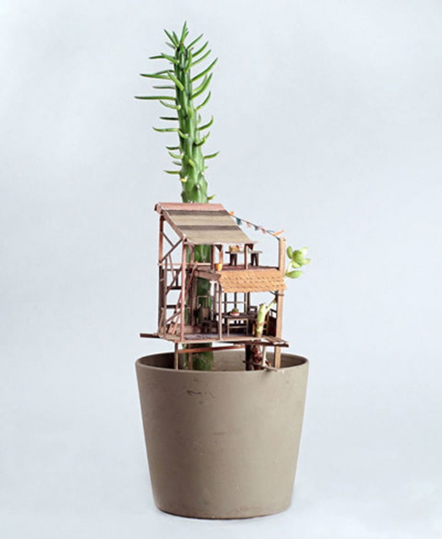 Gợi ý những chậu cây tuyệt đẹp cho ngôi nhà ngày tết  - ảnh 8