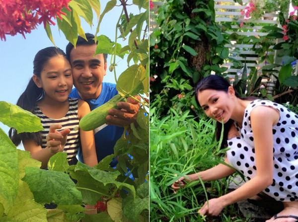 Vườn rau sạch trong ngôi nhà triệu đô của sao Việt - ảnh 20