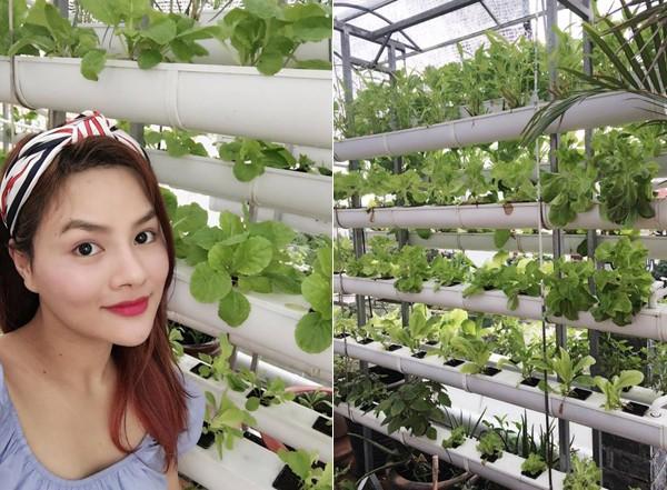 Vườn rau sạch trong ngôi nhà triệu đô của sao Việt - ảnh 8