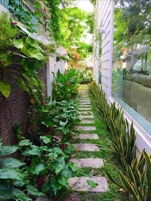 Vườn rau sạch trong ngôi nhà triệu đô của sao Việt - ảnh 22
