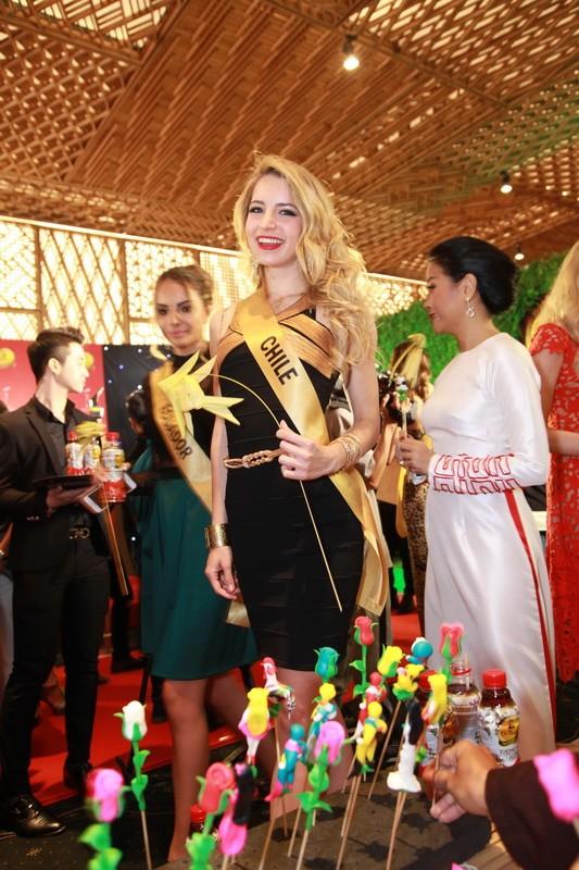 Mãn nhãn với 80 hoa hậu thế giới khoe sắc tại TP.HCM - ảnh 3