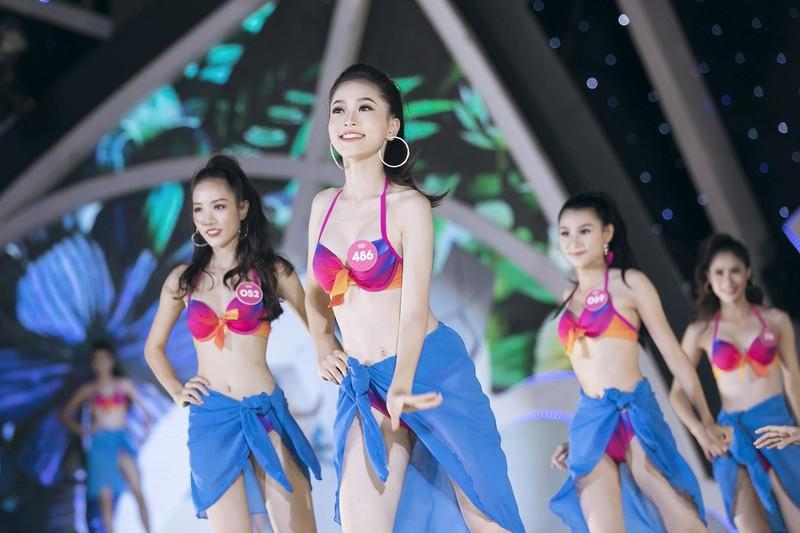 hoa hậu thi bikini