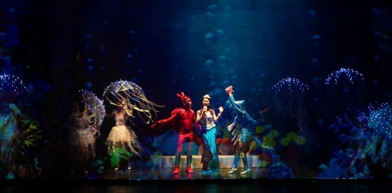 Nhà hát Tuổi Trẻ đem 'Giấc mơ nàng tiên cá' vào Nam - ảnh 2