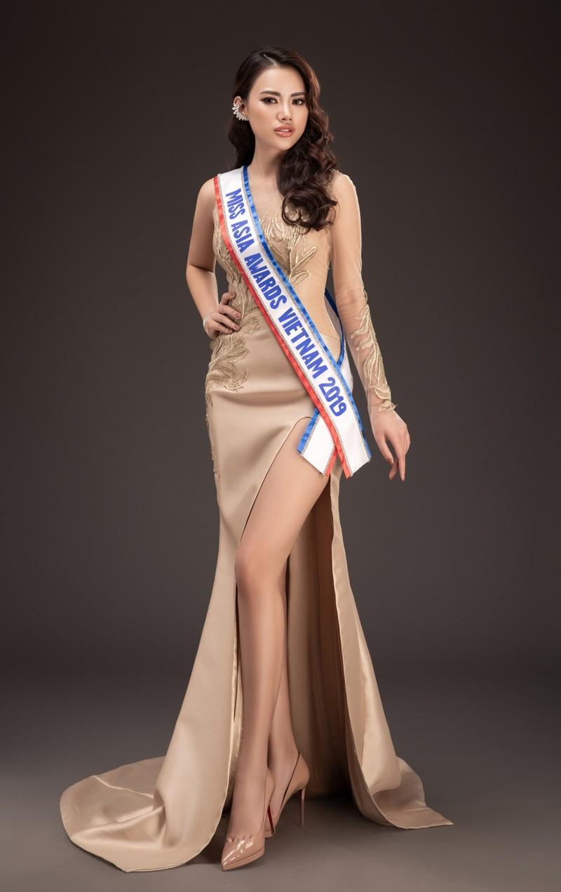 Hà Vi Vi tham dự Miss Asia Award 2019 - ảnh 5