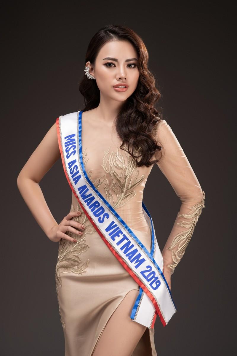 Hà Vi Vi tham dự Miss Asia Award 2019 - ảnh 6