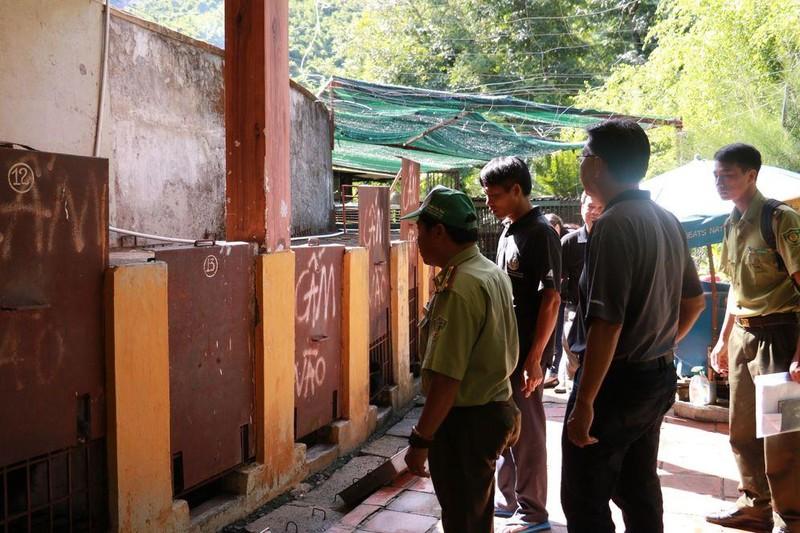 Cứu hộ bốn cá thể gấu ngựa tại Nha Trang  - ảnh 3
